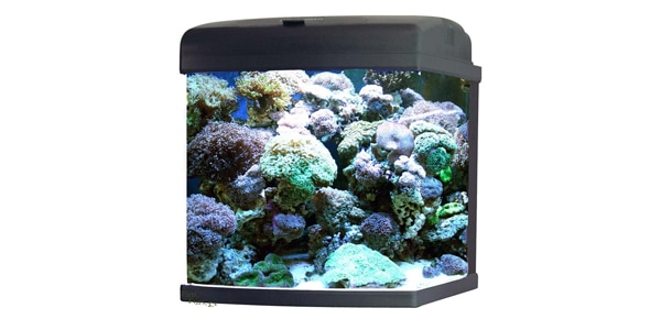 JBJ 28 Gallon Nano Cube Aquarium