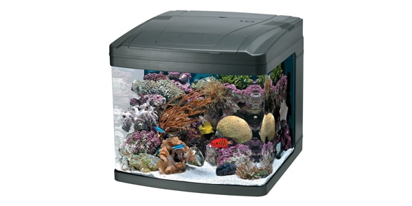 Oceanic BioCube 29 Gallon Aquarium