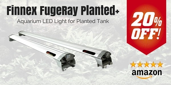 Finnex FugeRay Planted+