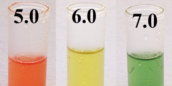 Lower the pH with Chemical