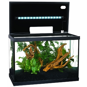 10 Gallon Aquarium - Marina LED Aquarium Kit
