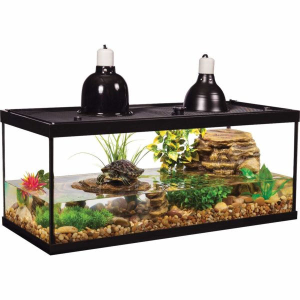 Turtle Tank Set Up And Maintenance The Aquarium Guide